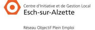 Centre d\'Initiative et de Gestion Local Esch-sur-Alzette
