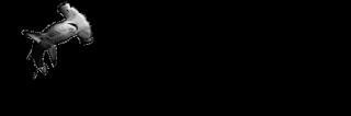 Zugaina
