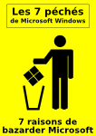 flyer-windows-7-peches-fond-jaune.png