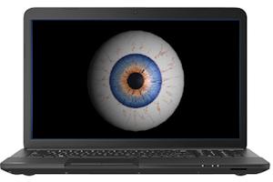 Internet Surveillance - Mike Licht